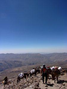 Górski transport żywności do schroniska Damawand