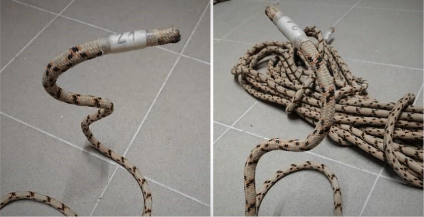 lina cobra