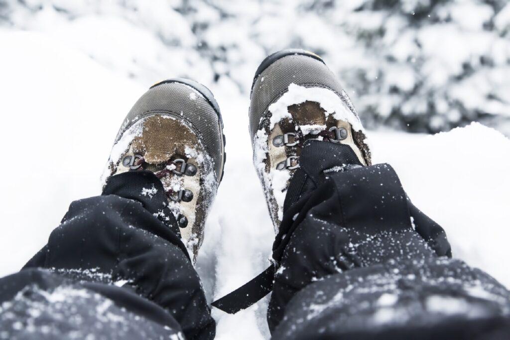 stuptuty zimą