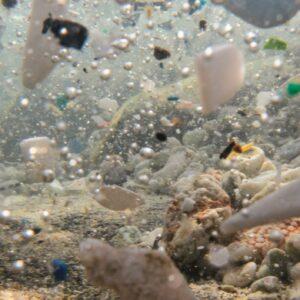 Mikroplastik - mały ale bardzo duży problem