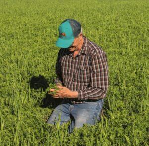 Odpowiedzialne uprawy Patagonia