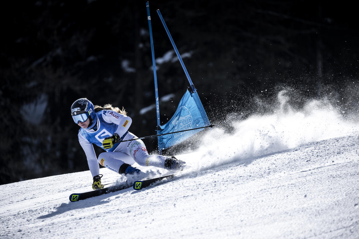 Salomon - zawody narciarskie