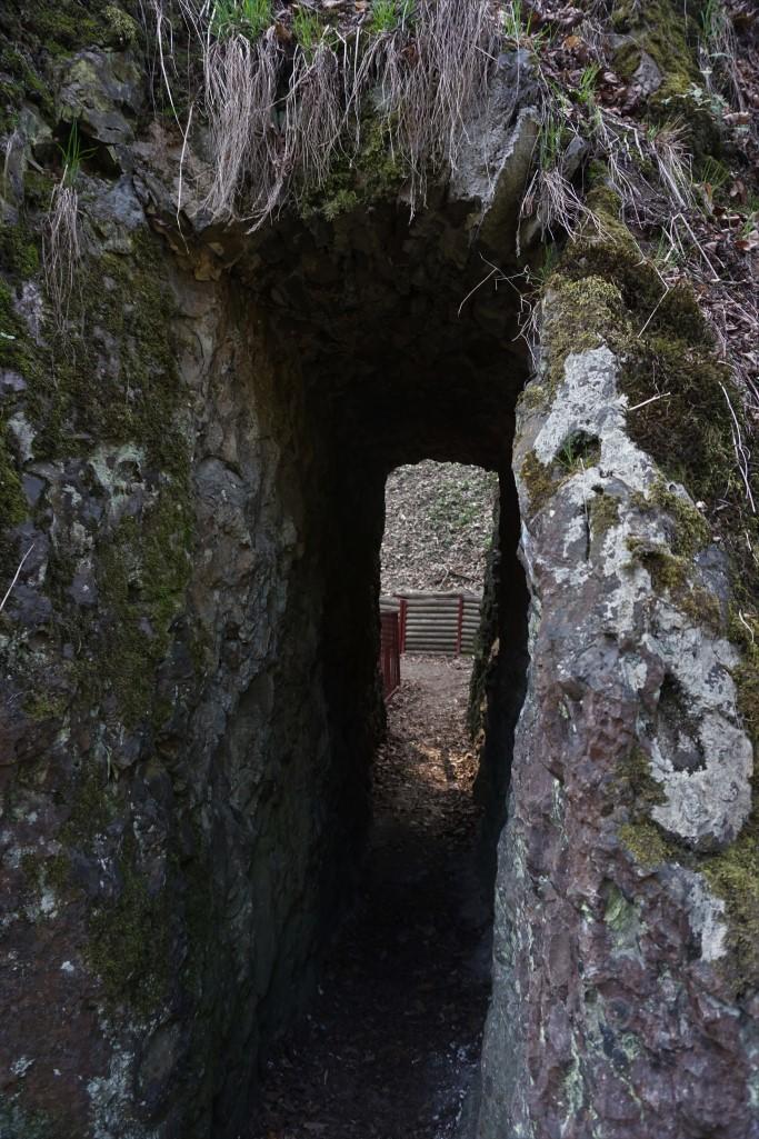 tunel ścieżka hochbergów