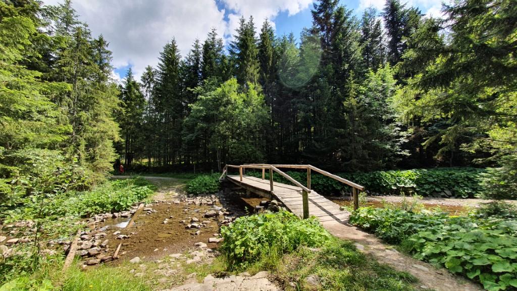 Mostek na szlaku - Babia Góra