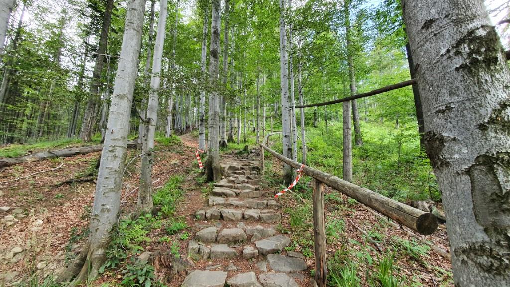 Babia Góra - podejście