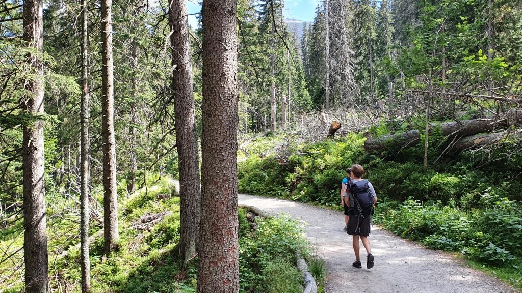 Ścieżka ze schroniska - Babia Góra