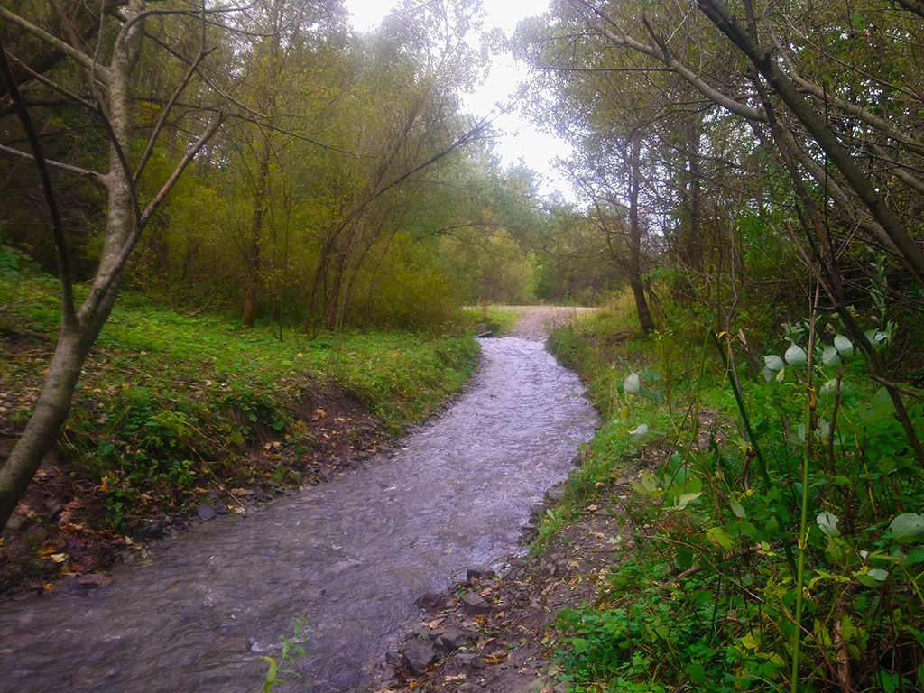 rzeka Biała płynie w miejscu szlaku