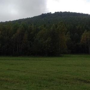 widok z łąk na Lackową